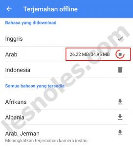 Cara Gunakan Google Translate Tanpa Koneksi Internet!